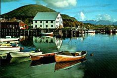 Nordland fylke Hadsel kommune Melbu i Vesterålen havnemotiv 1970-tallet