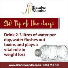 Slender Wonder, Hcg Recipes, Weight Loss, Motivation, Losing Weight, Loosing Weight, Loose Weight, Inspiration