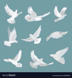 Spiritual Paintings, Nature Paintings, Bird Illustration, Graphic Design Illustration, Peace Bird, Peace Dove, Fly Drawing, Bird Graphic, Dove Bird