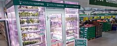 Metro-groothandel in Berlijn verbouwt eigen groente