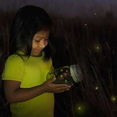 How to turn your yard into a firefly haven and recapture your childhood excitement of seeing these treasured insects light up the night sky.