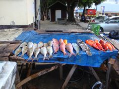 Étal de poissons à Grand Baie #Maurice Maurice, Fish, Meat, Pisces, Travel, Kitchens, Ichthys