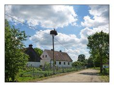 Storchendörfer werden die Dörfer nahe an der polnisch/russischen Grenze genannt, in denen oft mehr Störche als Menschen anzutreffen sind.   Nester sind fast auf jedem Haus, auf Strommasten und Straßenlampen.