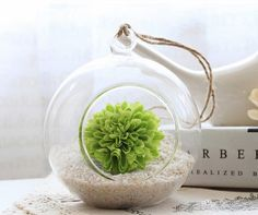 Glass Hanging Planter Air Plant Terrarium Container Vase -- Home decoration -- Wedding Decoration