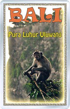 $3.29 - Acrylic Fridge Magnet: Indonesia. Uluwatu. Bali. Monkey