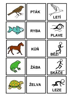 Preschool Activities, Activities For Kids, Baby Time, Pictogram, School Classroom, Kids Education, Speech Therapy, Montessori, Coloring Pages