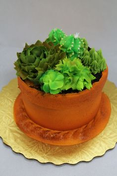 Succulent Flower Pot