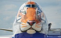 Transaero pinta tigre siberiano na fuselagem de Boeing 747-412