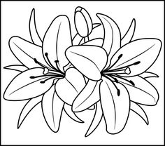 image detail for lily printable color by number page hard