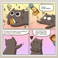 Make sure ro talk to your cats about catnip.... :D