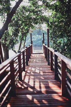 jembatan kehidupan