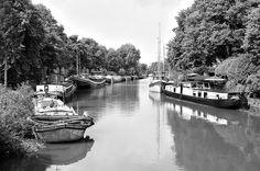het Reitdiep, Groningen