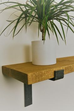 Shelving made from solid wood scaffold boards