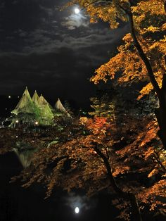 兼六園 晩秋の月