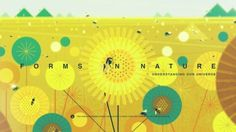 """Through scientific study and understanding, we deepen our connection to the natural world."" FORMS IN NATURE: Understanding Our Universe An audiovisual collaboration by Kevin Dart, Stéphane Coëdel,. Powerpuff Girls, Design Thinking, Steven Universe, Cartoon Network, Storyboard, Wireframe Mobile, Design Android, Kevin Dart, 2d Character Animation"