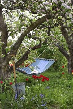 The perfect idea for a hammock -- a simple one in the backyard by the flowers!