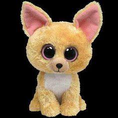 Chihuahua stuffed animal :)