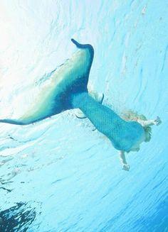 Little Mermaid Erg Mooie 10322