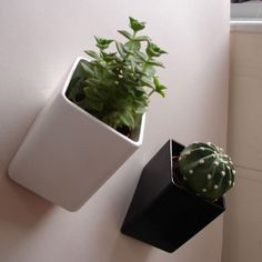 Wall Mounted Flower Pots – Off The Wall by Thelermont Hupton | DigsDigs