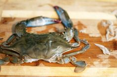 Coconut & Lime // Rachel Rappaport: How to: Clean Soft Shell Crabs