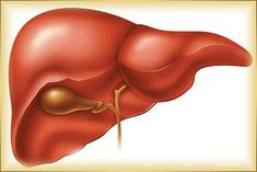 Folk Recipes: 10 warning signs that something is wrong with your liver. Recipes for liver detoxification. Whole Foods. Natural Liver Detox, Liver Detox Cleanse, Detox Your Liver, Detox Diet Plan, Full Body Detox, Detox Your Body, Barley Health Benefits, Sistema Gastrointestinal, Clean Your Liver