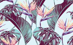 From Hawaiian Shirts to Lush Interiors: 3 Ways Tropical Design is Taking Over