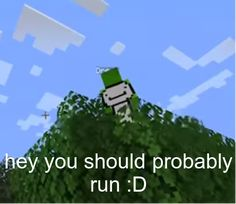 Minecraft, Walking On A Dream, Dream Friends, Response Memes, Wonder Boys, Danganronpa Characters, Cute Games, Stupid Funny Memes, Reaction Pictures