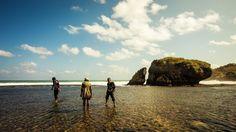 Sejuta Pesona Keindahan Pantai Kukup Yang Memukau Dan Menakjubkan
