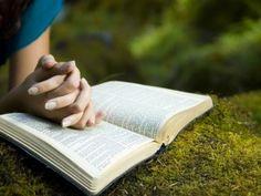 Pour réussir dans vos entreprises, étudiez la Bible - Rick Warren / La Pensée du Jour du 27 Février 2014 - Top Messages - Top Chrétien - La Bible contient des milliers d'autres promesses que vous pouvez revendiquer.