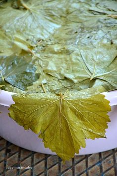 Plant Leaves, Food And Drink, Pasta, Tableware, Recipes, Kitchen, Dinnerware, Cooking, Tablewares
