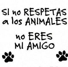 Respeta a los animales!!