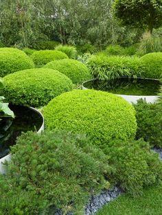 Diarmuid Gavin's Chelsea garden 2