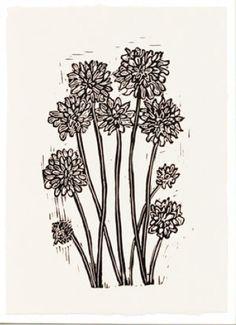Chrysanthemum by Hugo Guinness  http://www.wilsonstephensandjones.com