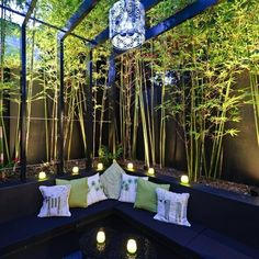 Terrace design dark furniture green plants