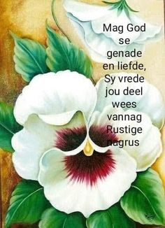 Afrikaanse Quotes, Goeie Nag, Special Quotes, Good Night Quotes, Love You More, Sleep Tight, Sweet Dreams, Scrapbooking, Cards