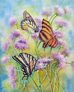 Butterflies by gabriele baber watercolor/pen/Ink ~ 18 x 14
