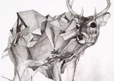 Chris Scarborough illustration