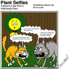 Seems like there's a domestic going on in Plant's garden! Plant Cartoon, Hardy Plants, Garden, Pictures, Photos, Garten, Lawn And Garden, Gardens, Gardening