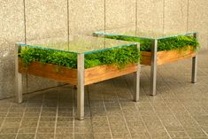 Fill Your Home With Greenery With The Living Table - Design Milk - via http://design-milk.com/the-living-table-by-habitat-horticulture-small-space-planter/