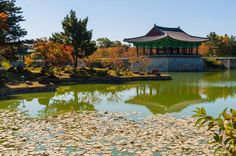 3-Day Tour from Seoul: Gyeongju and Busan - Lonely Planet