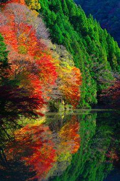 ...Oku-kiyosumi gorge, Chiba, Japan...