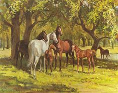 Summertime by Sam Savitt All The Pretty Horses, Beautiful Horses, Classic Equine, Horse Books, Horse Artwork, Painted Pony, Cowboy Art, Vintage Horse, Vintage Drawing