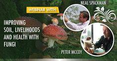 Free Webinar this week with Peter McCoy author of Radical Mycology. #mycology #fungi #mushrooms #Mushroom #BeatrixPotter #nature #Ambleside #fungus #science #mushroomsociety #shrooms