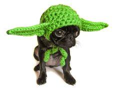 Gorros tejidos de personajes de Star Wars para las mascotas