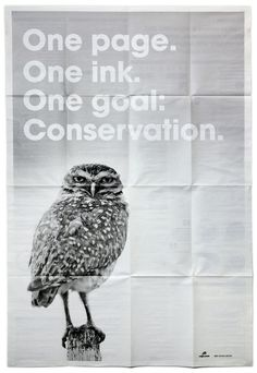 Calgary Zoo // Annual Report 2011 - Jonathan Herman // Graphic Design & Advertising // Calgary