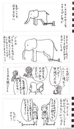 http://www.huffingtonpost.jp/2017/07/18/mucho-circus-elephant_n_17521958.html