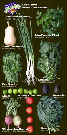 This Week's  Local Produce Box. Here is what you can get locally in Central Texas, around Austin in the fall! Butternut squash, arugula, parsley, pea shoots, limes and more. All local food.