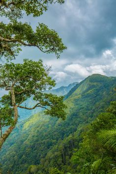 Kerala Tourism (@KeralaTourism)   Twitter