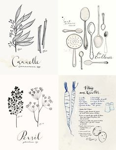 french culinary illustrations - similar to what I'll like to have in our project