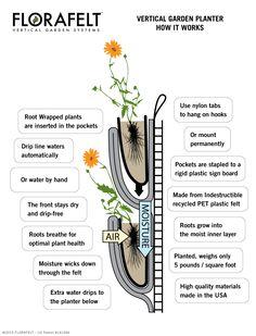 Florafelt vertical gardening system http://www.plantsonwalls.com/?Click=2225